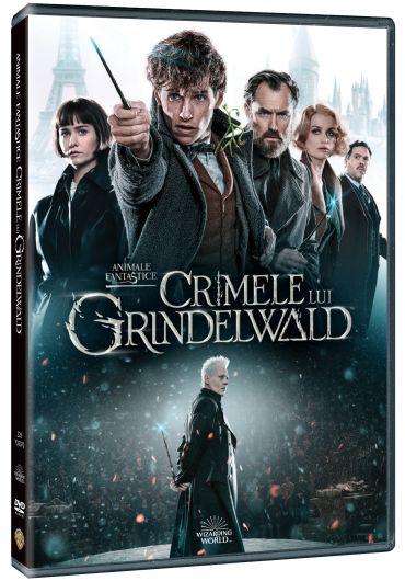 Animale Fantastice - Crimele lui Grindelwald DVD