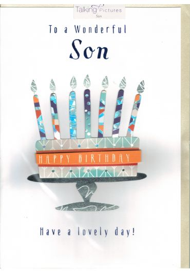 Felicitare - To a Wonderful Son - Have a lovely day!