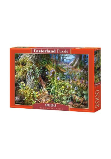 Puzzle 2000 piese From Rusland Woods