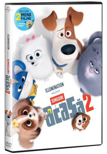 Singuri acasa 2 DVD