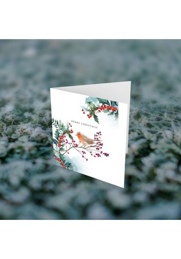Felicitare - Merry Christmas ramuri