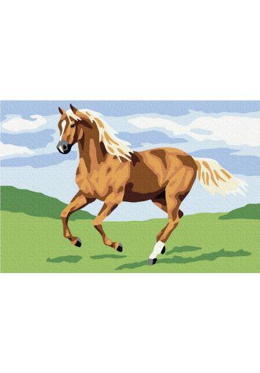 Set Picturi pe numere, Acuarello, 20X30 cm - Horse