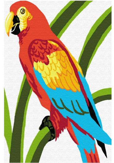 Set Picturi pe numere, Acuarello, 20X30 cm - Parrot