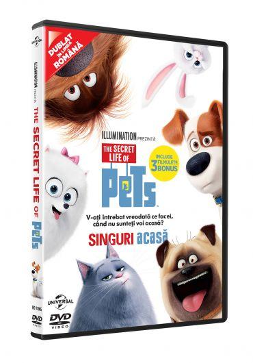 The secret life of pets [DVD] [2016]
