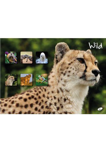 Caiet A5 48 file matematica Wild
