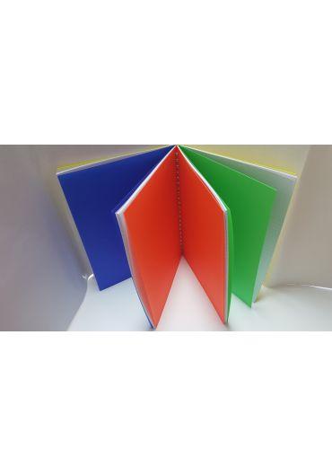 Caiet A4 100 file dictando PPcover spiralat 4 coperti